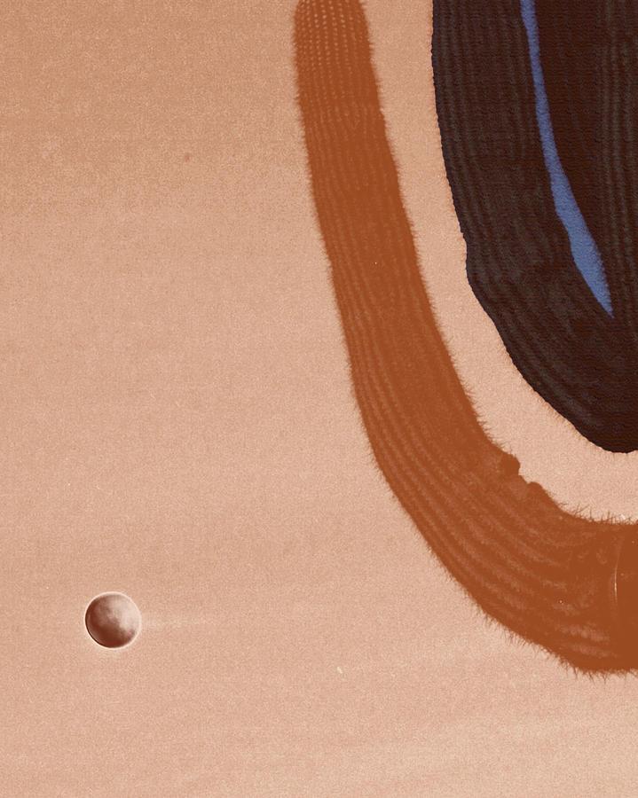 Saguaro And Eclipse Digital Art