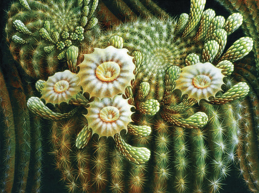 Saguaro Cactus Blossoms Painting By James Larkin