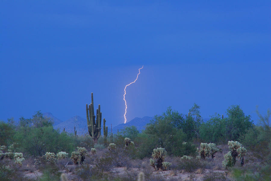 Lightning Photograph - Saguaro Desert Lightning Strike Fine Art  by James BO  Insogna
