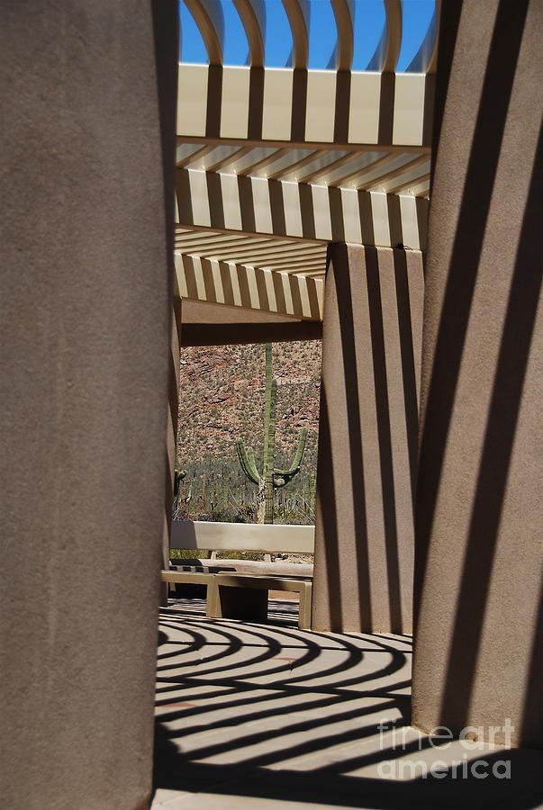Architecture Photograph - Saguaro National Park by Lois Bryan