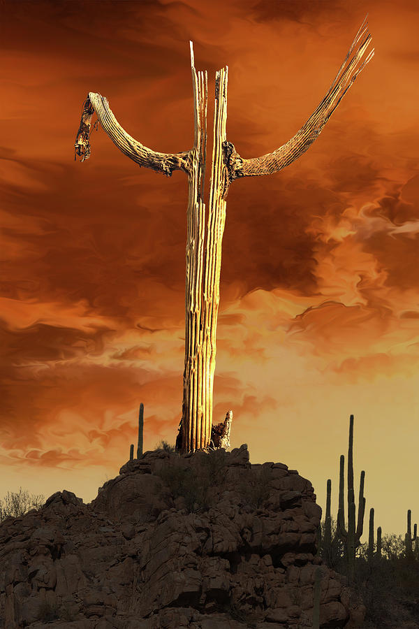 Saguaro Sculpture by Mike Stephens