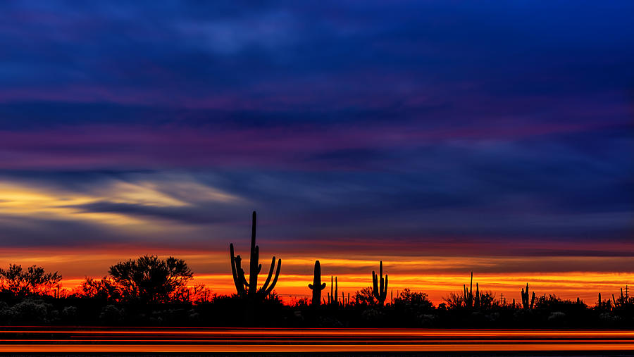 Saguaro Sunset V16 by Mark Myhaver