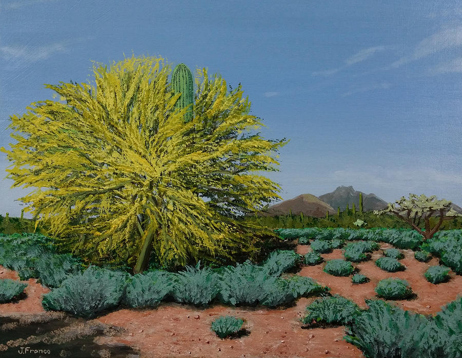 Saguaro Surrounded By Palo Verde Tree Painting By Jeff Franco