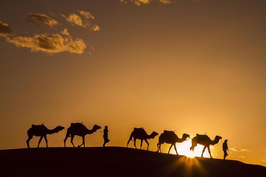 Sahara Desert Sunset Photograph by Lindley Johnson