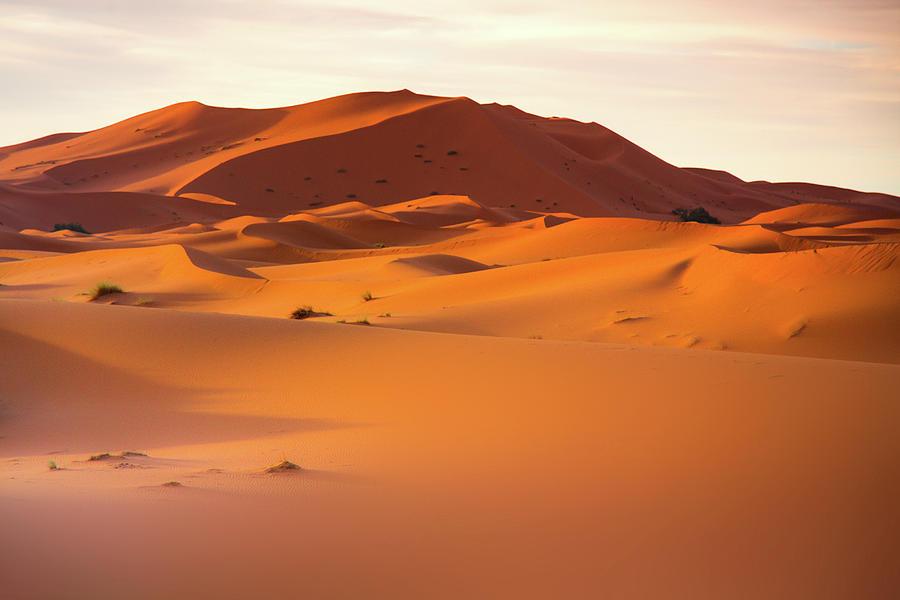 Sahara Dessert - Morocco Photograph by Chantelle Flores