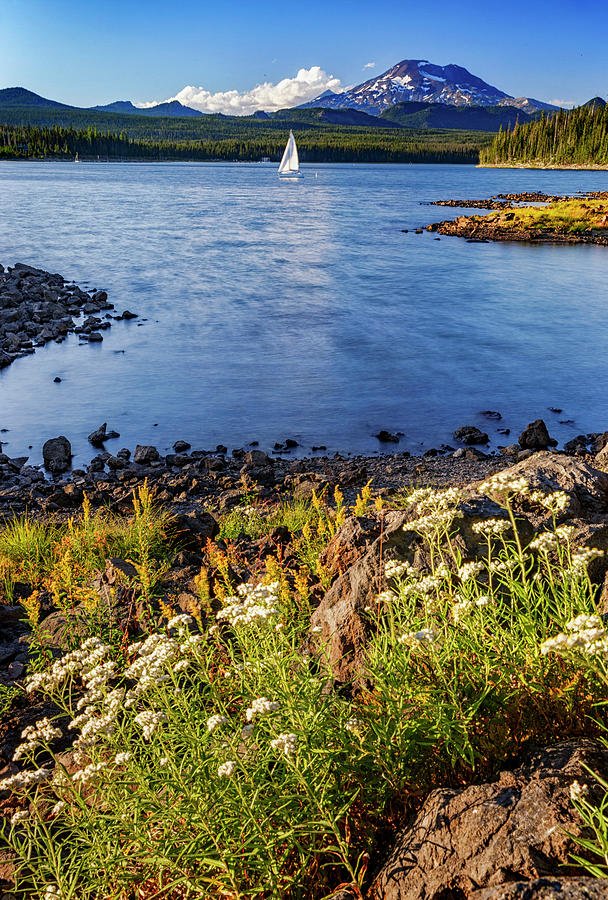 Sailing Photograph - Sail Away by Cat Connor