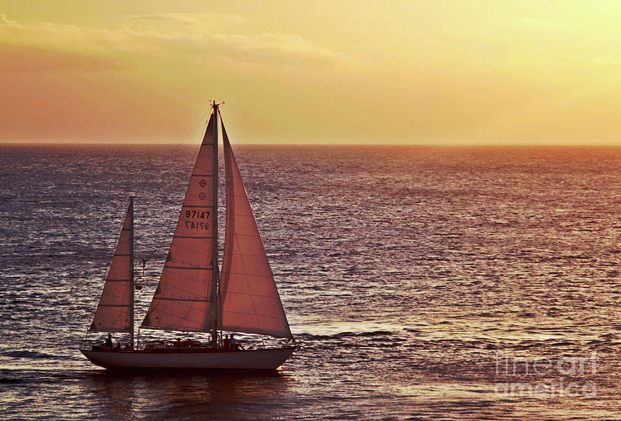 Sailing Photograph - Sail Away by Maria Arango