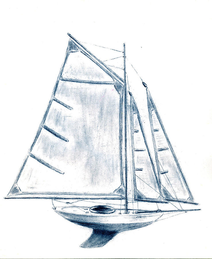 Boat Drawing - Sail Boat by Michael Vigliotti