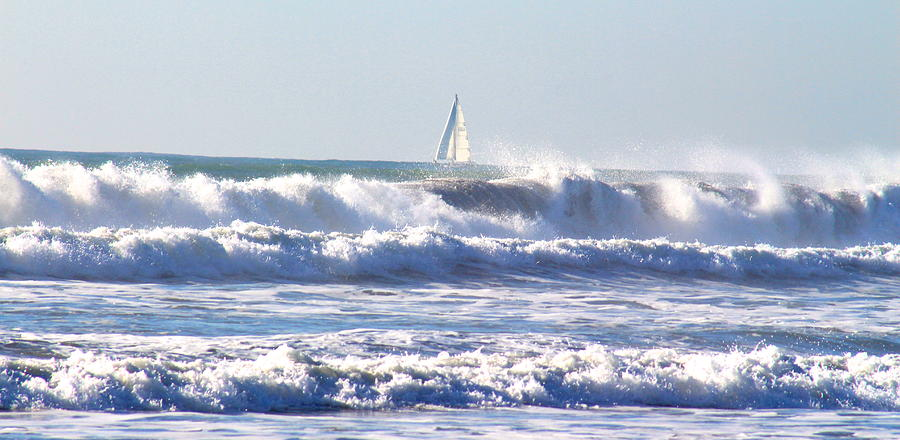 Sailboat by Joy Buckels