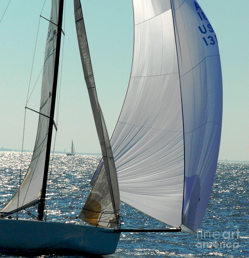 Sailboat by Robert  Suggs