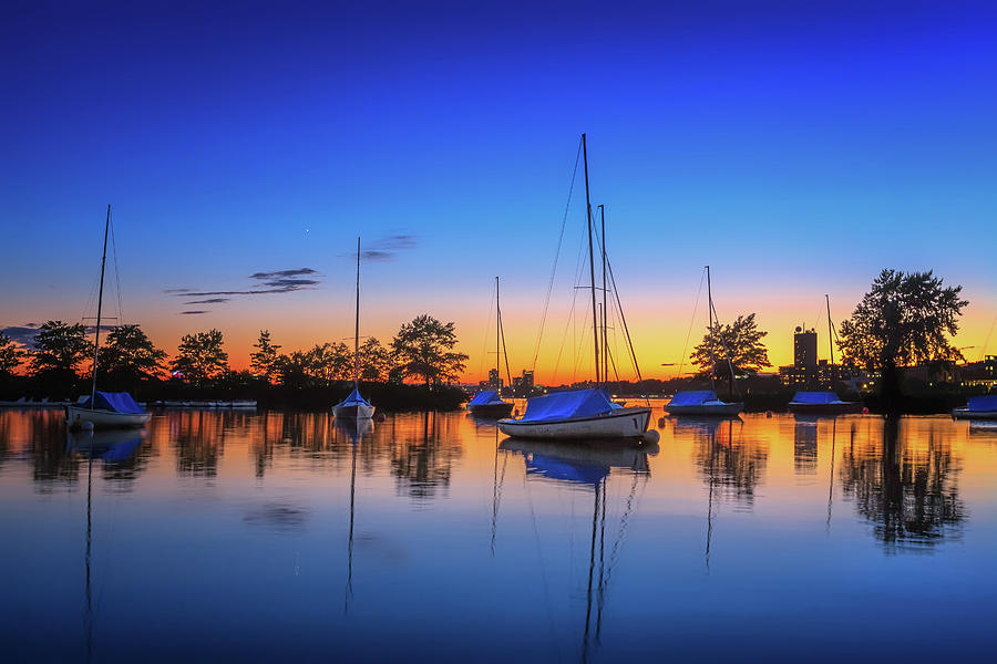 Sailboats in a Blue Sunset by Sylvia J Zarco