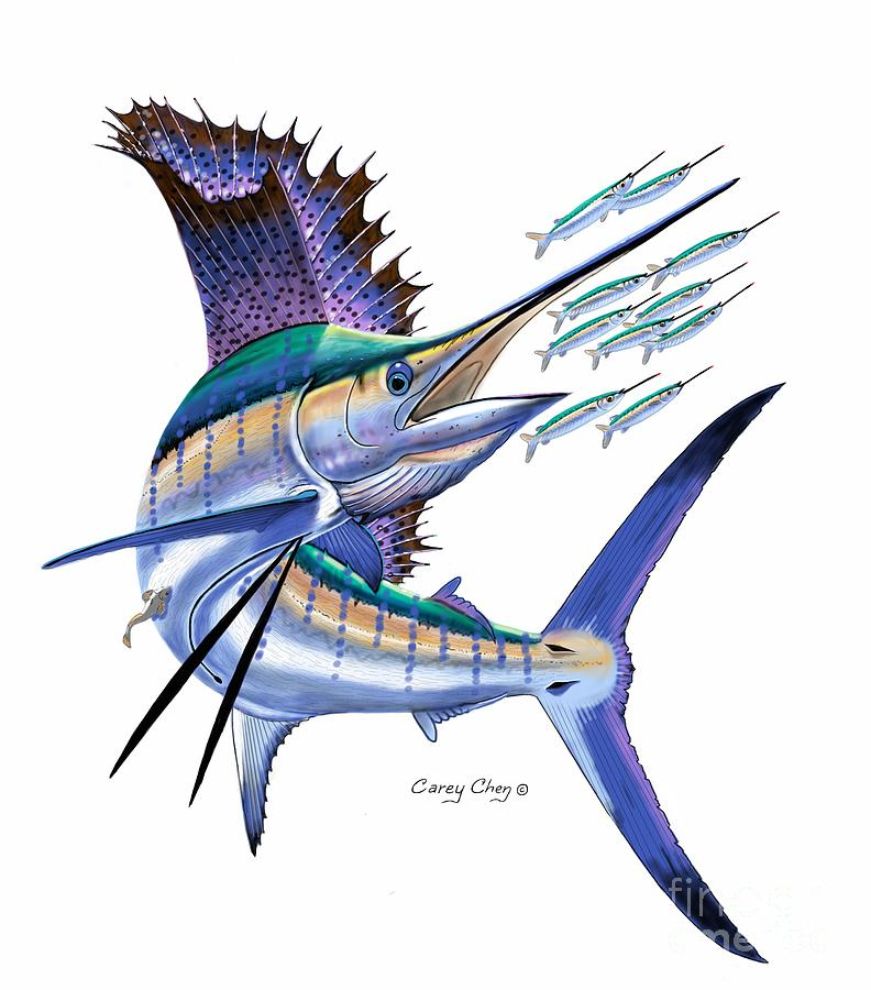 Sailfish Digital Digital Art By Carey Chen