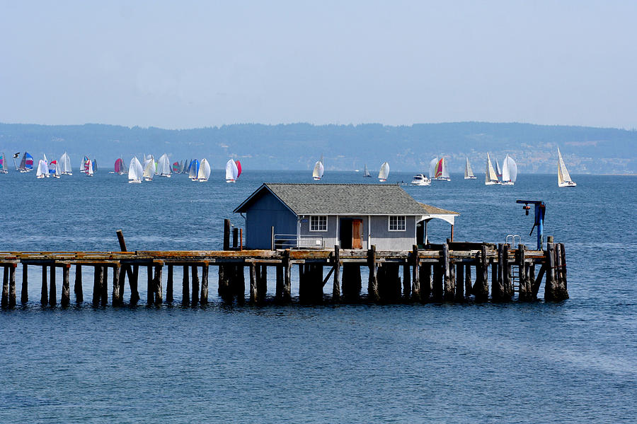 Coupeville Photograph - Sailing At Penn Cove by Mary Gaines