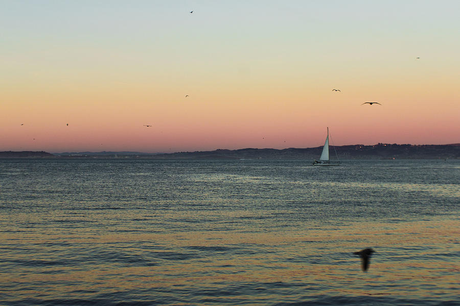 Sail Photograph - Sailing Away by Sergio Perez