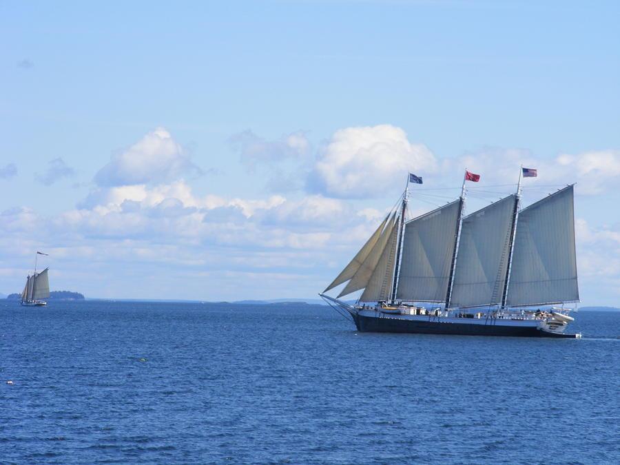 Schooners Photograph - Sailing Buddies by David Mills