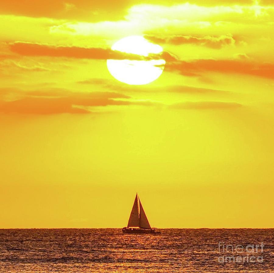 Sailboat Photograph - Sailing In Hawaiian Sunshine by D Davila