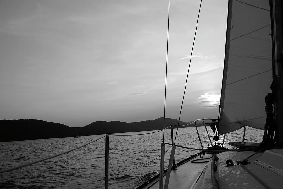 Sail Photograph - Sailing by Maria Lopez