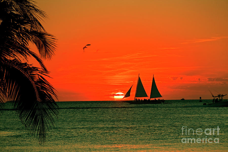Sailing Off Into The Key West Sunset Photograph