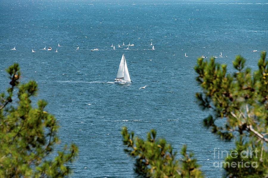 Prince Island Photograph - Sailing The Sea Of Marmara by Bob Phillips