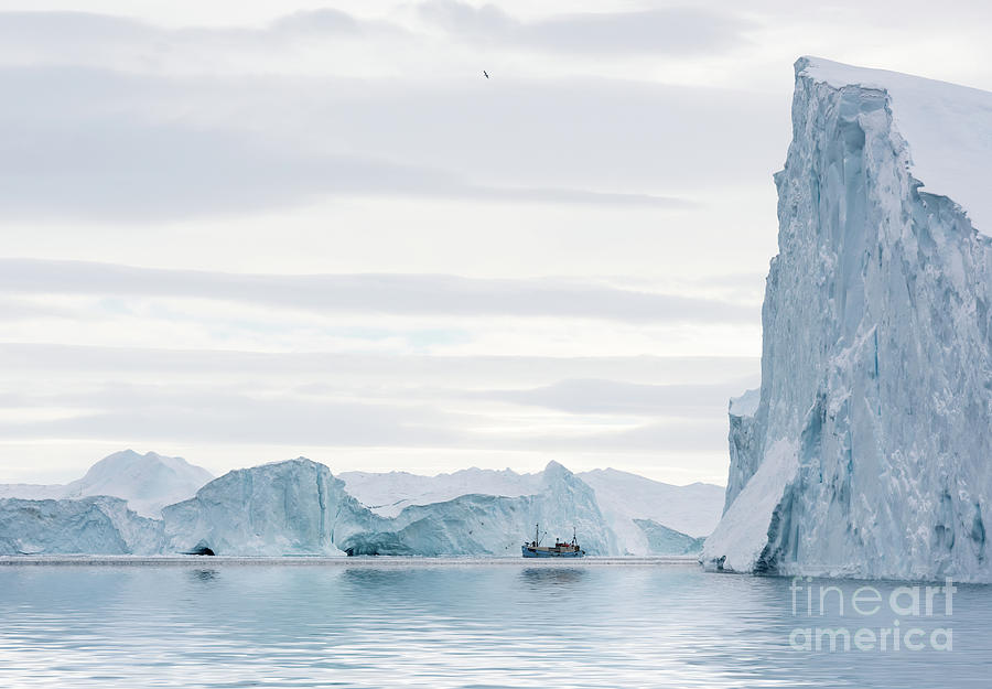 Greenland Photograph - Sailing through  the Icefjord by Janet Burdon