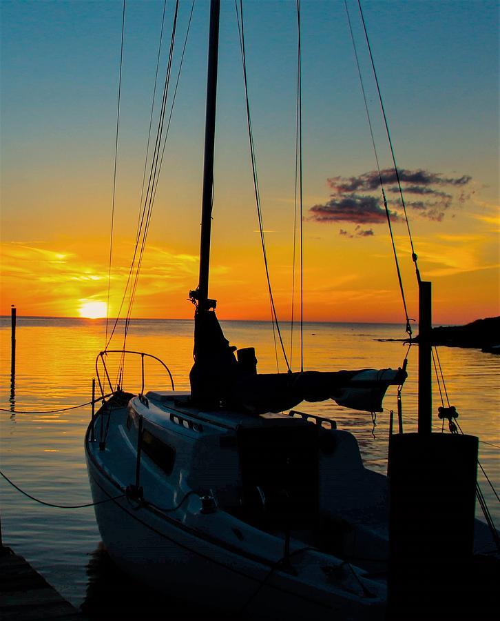 Sailors Delight by Nick Knezic