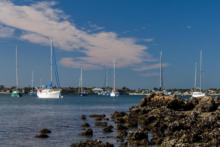 Marina Jacks Photograph - Sailors Dream by Michael Tesar