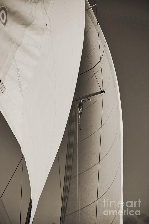 Sailing Photograph - Sails by Dustin K Ryan