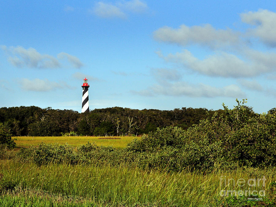 Marsh Painting - Saint Augustine Lighthouse by Addison Fitzgerald