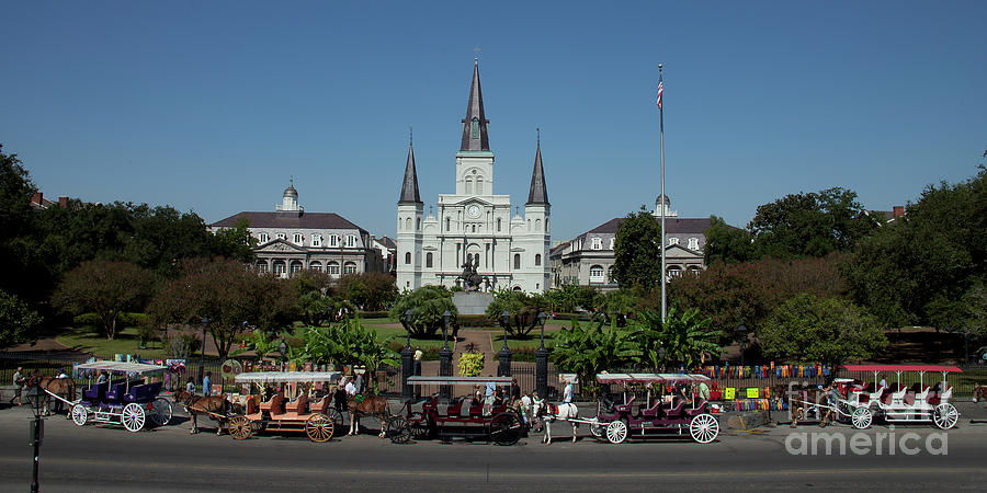 Saint Lewis Cathedral French Quarter New Orleans, LA by Ron Sadlier