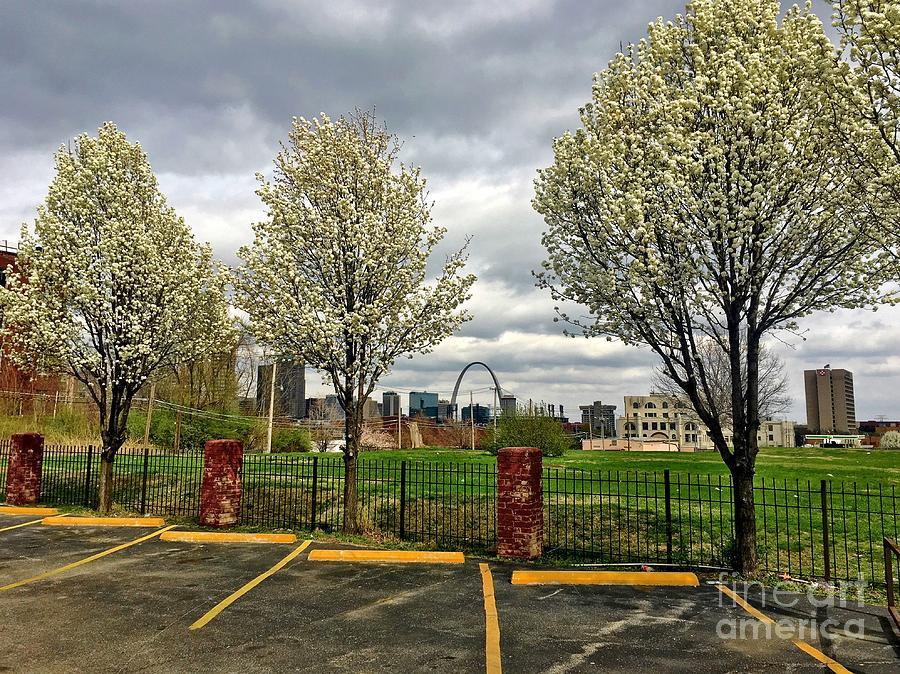Saint Louis Cityscape 032716 by Debbie Fenelon