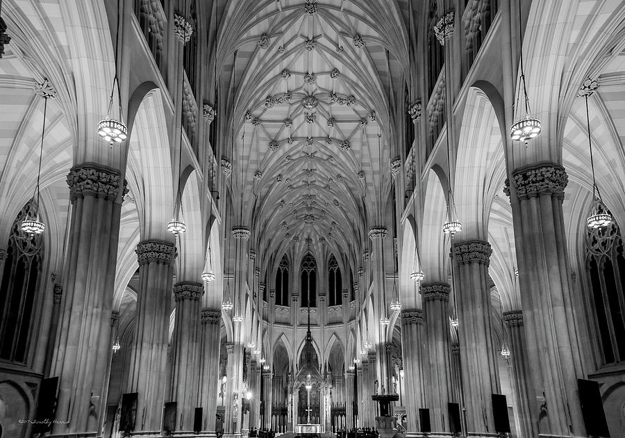 Saint Patrick's - NYC by Timothy Harris