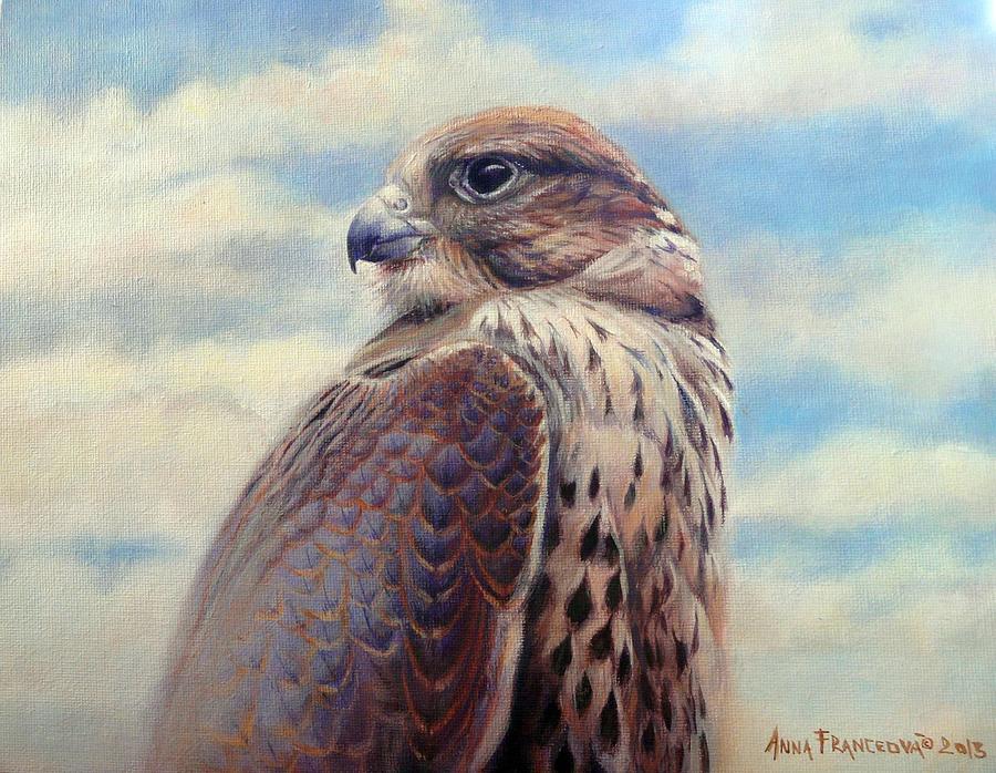 Falconry Painting - Saker Falcon - Ayra by Anna Franceova