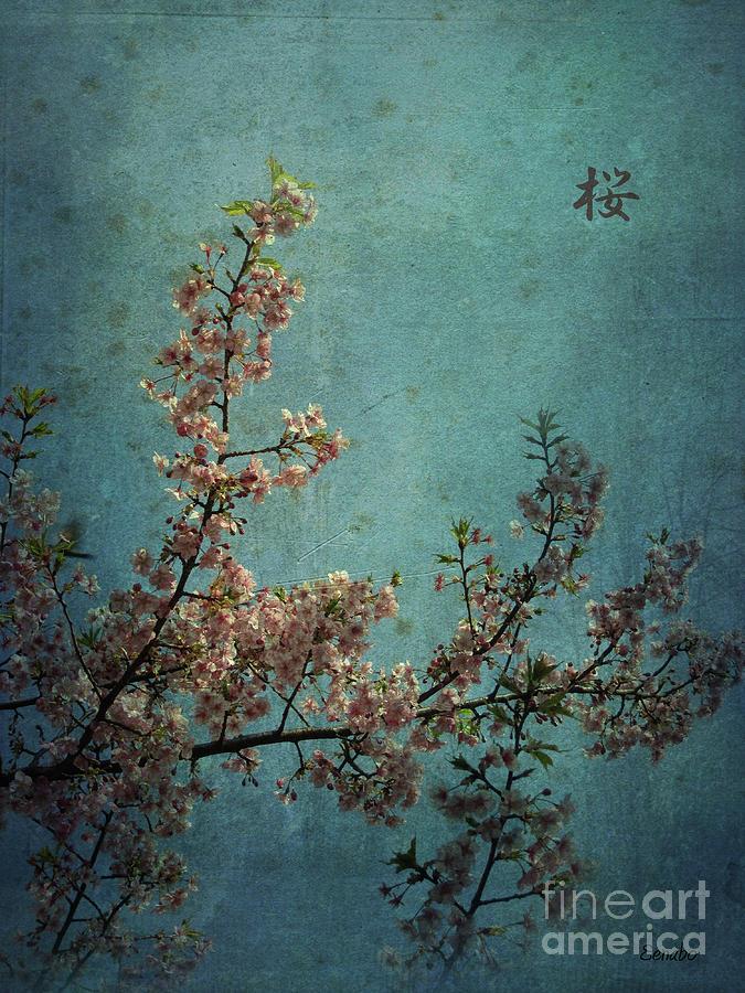 Sakura by Eena Bo