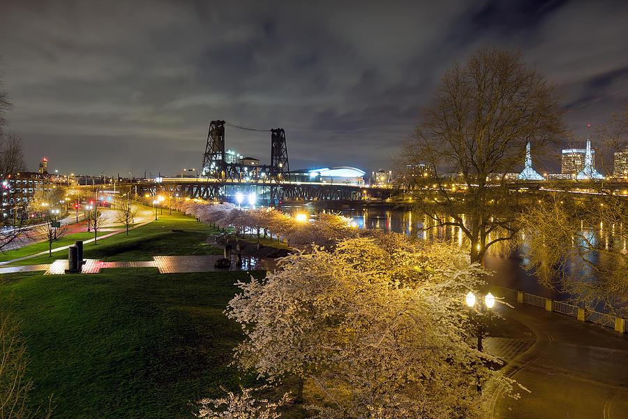 Sakura Photograph - Sakura Night by David Gn