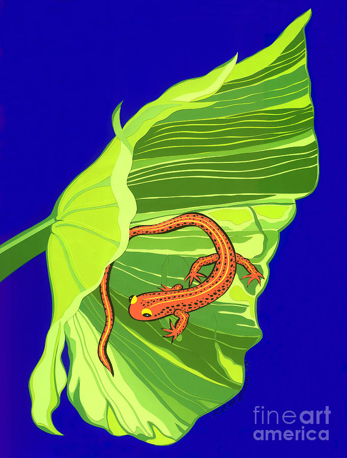 Nature Drawing - Salamander by Lucyna A M Green