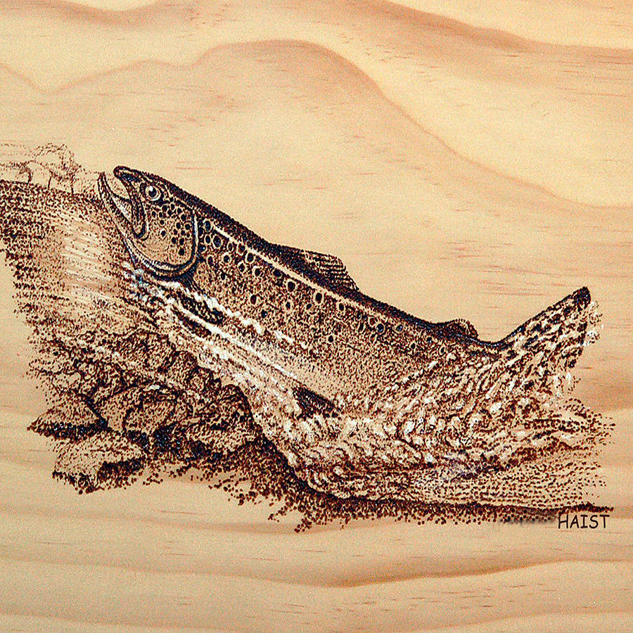Salmon Pillow/bag by Ron Haist