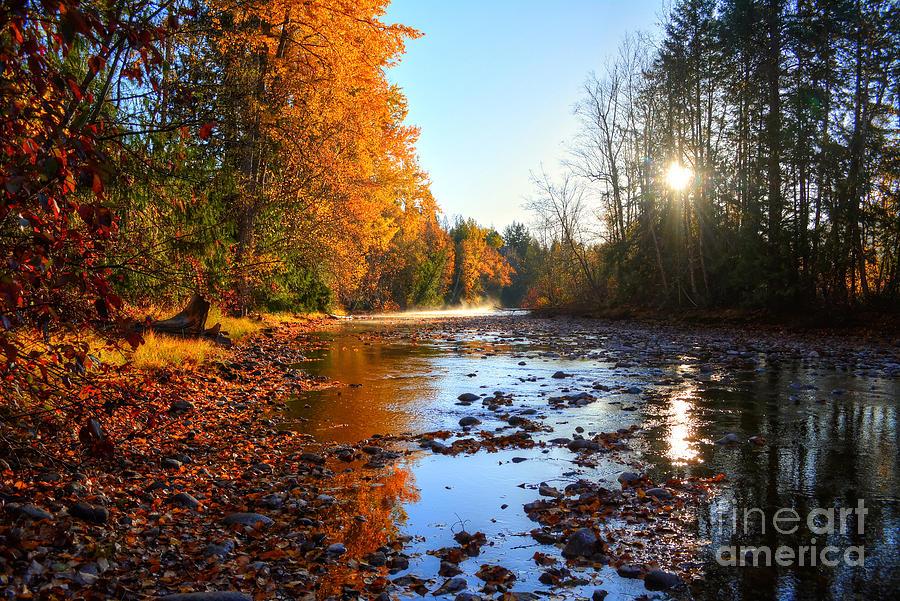 River Photograph - Salmon River Sanctuary by Skye Ryan-Evans