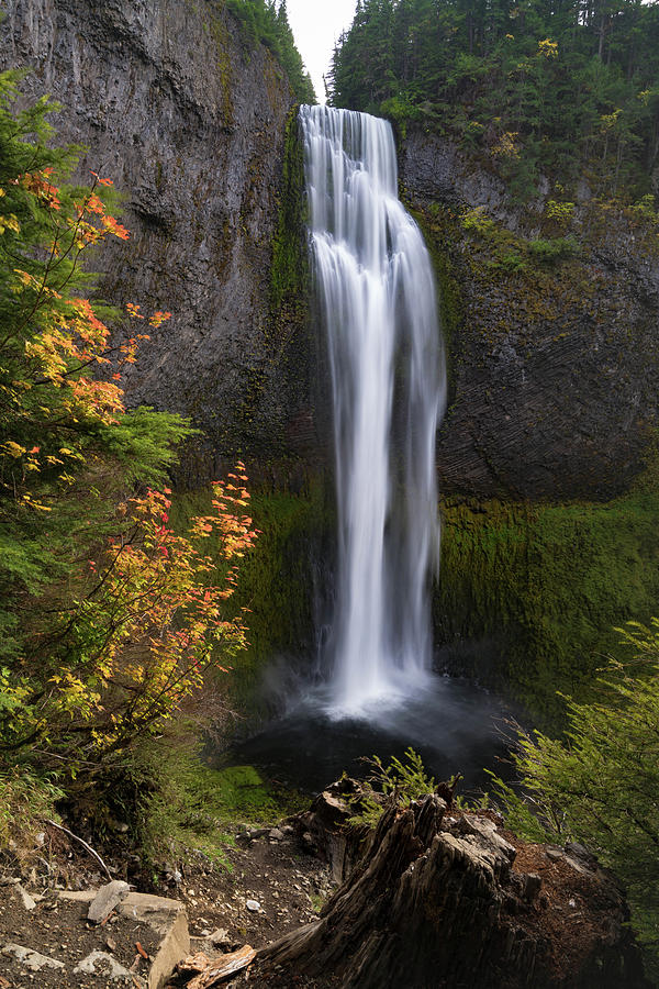 Salt Creek Falls by Brian Bonham