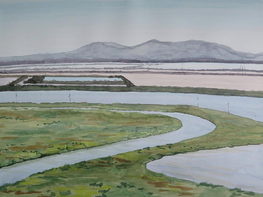 Plein Air Painting - Salt Fields by Bethany Lee