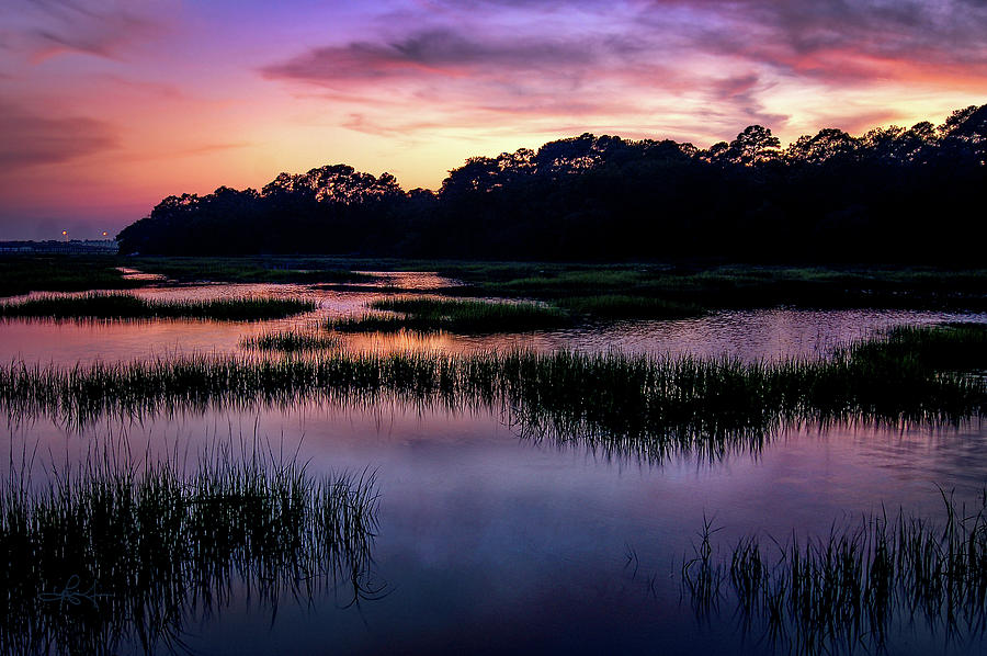 Salt Marsh Musing by Renee Sullivan