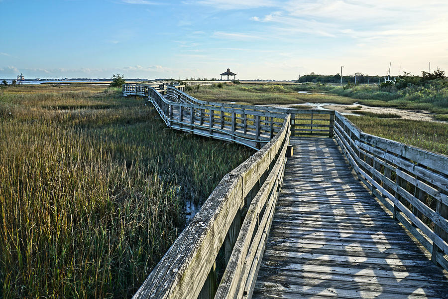 Salt Marsh Walk by Don Margulis