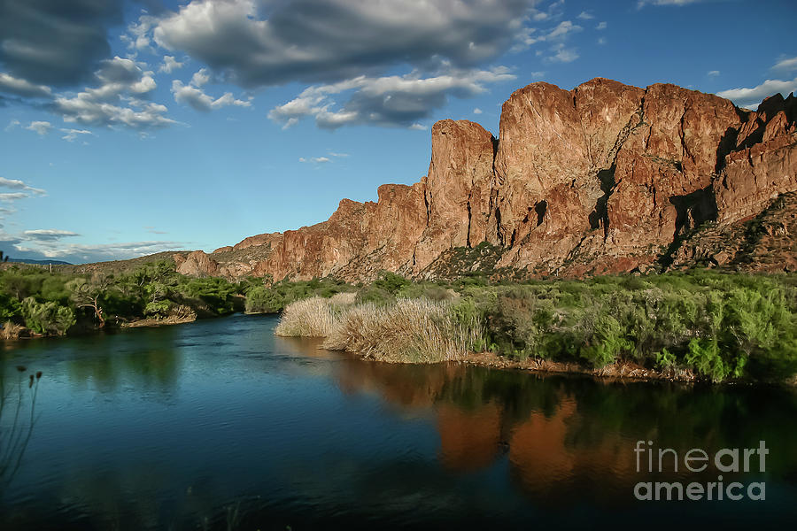 Salt River Arizona by Chandra Nyleen