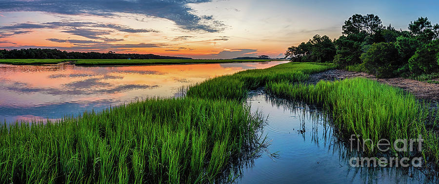 Saltwater Marsh Summer Sunrise by David Smith