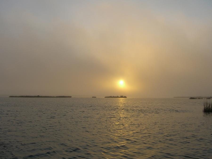 Salt Marsh Photograph - Salty Sun by Jane Buck