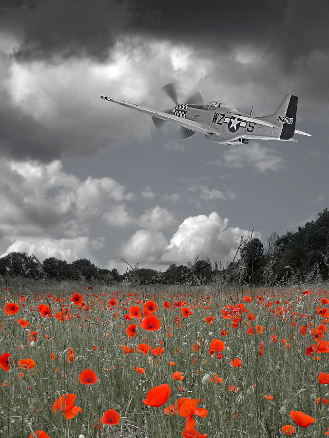 Salute To The Brave - p51 Flying over Poppy Field by Gill Billington