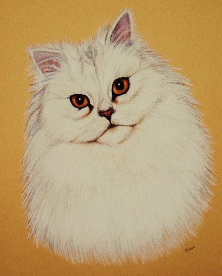 Cat Pastel - Sam - Persian Cat by Lucy Deane