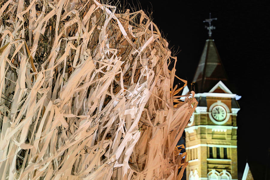 Samford Hall Photograph - Samford Hall And Rolling Toomers by JC Findley