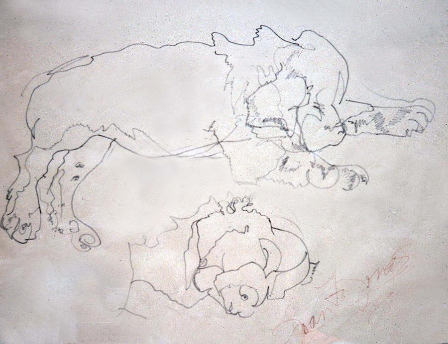 Sleeping Puppy Drawing - Sammy As A Pup by Joan  Jones