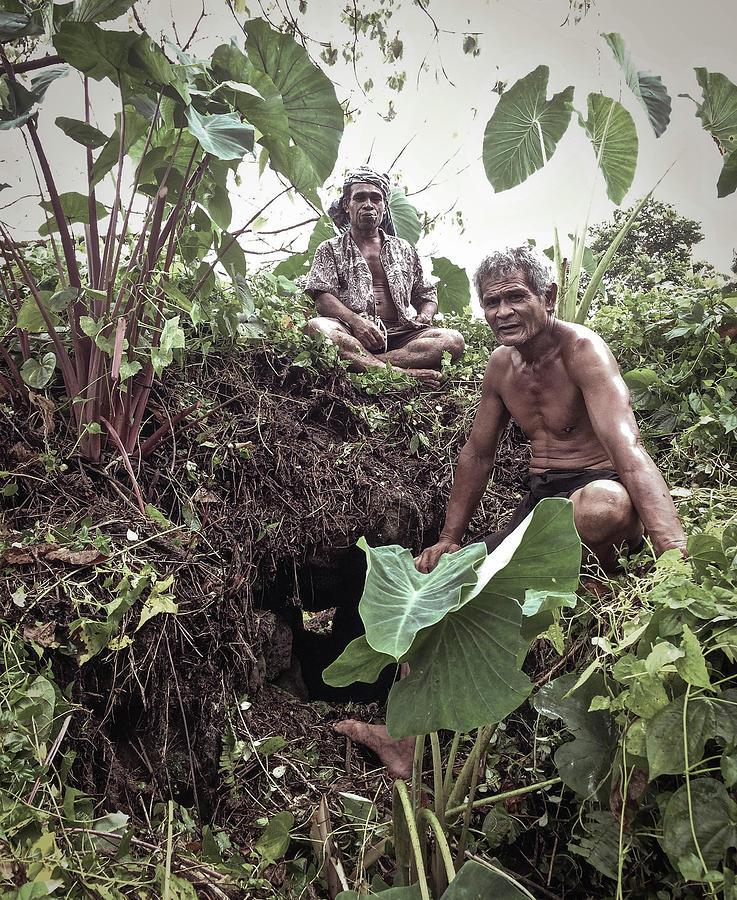 Samoa Photograph - Samoan Planters by Paki OMeara