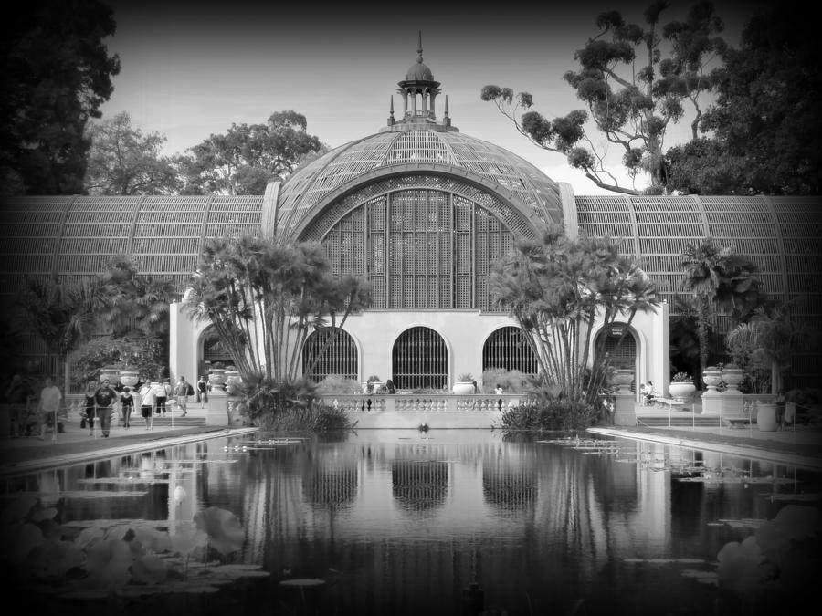 Balboa Park Photograph - San Diego Botanical Foundation by Karyn Robinson